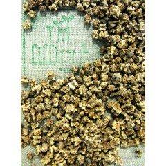 Semillas de Remolacha ecológica para germinar