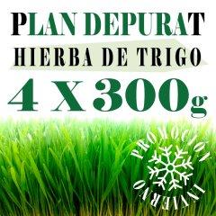 Plan Depurate con Trigo 300x4