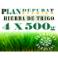 Plan_Depurate_premium_500x4