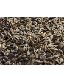 Semillas de Trigo Antiguo Farro 500gr